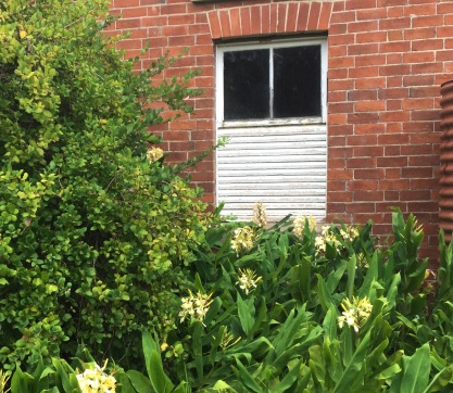 Ginger's studio